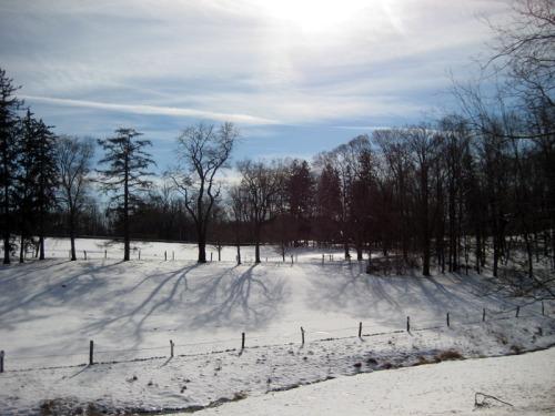A January morning at Stone Barns in Pocantico Hills, NY.